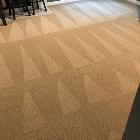 Professional carpet cleaning services vacaville